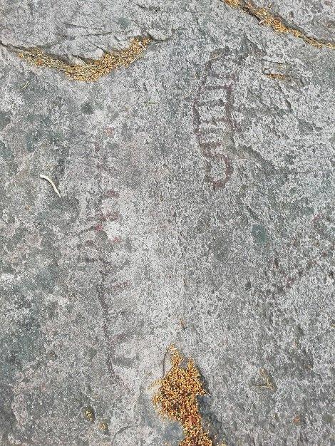 Petroglifo de otro barco y un animal